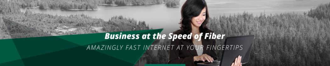 "Slider. Woman with laptop. Text reads: ""Business at the speed of fiber. Amazingly fast internet at your fingertips."""