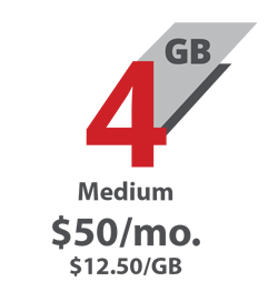 4 GB medium. $50 per month or $12.50 per GB.